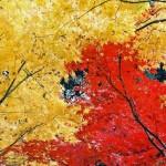 箱根美術館や小涌谷など箱根の紅葉スポット・見ごろ時期は?観光・温泉宿泊情報
