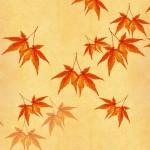福島の紅葉スポット!紅葉の見ごろ時期はいつ?観光・温泉宿泊情報