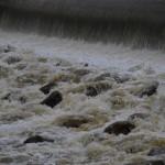 災害に備えての事前準備 大雨が降り始めてからの準備と心構えと知識