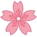 折り紙 桜 折り方-簡単な桜の花びらの作り方・切り方 平面の桜