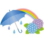 6月の折り紙 折り方 季節飾り作り方~梅雨や6月の花 簡単な製作