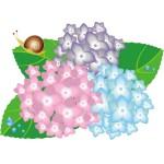 幼稚園保育園 梅雨の折り紙など6月の季節飾り作り方 壁面飾り製作