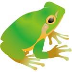 折り紙 蛙 かえる折り方 リアル上級の作り方動画 画像で補足説明