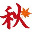 aki-i1