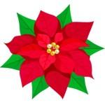 ポインセチア 折り紙 折り方-簡単な花のクリスマス飾り作り方