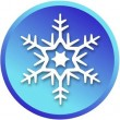 snowflak-i10