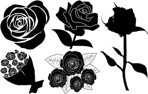 rose 5 mono