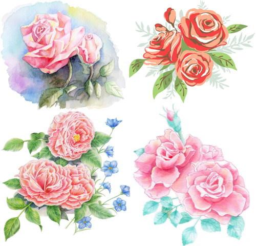 rose 9 draw