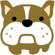 bulldog-i1