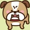 bulldog-i2
