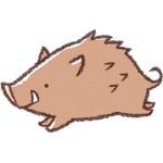折り紙 イノシシ 折り方 立体 難しい本上級向けの本格的な猪